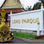 Лоро Парк на острове Тенерифе