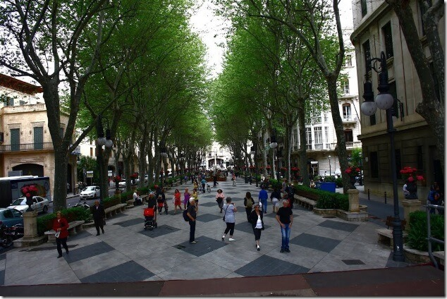 Бульвар Пасео-Дель Борн, Пальма де Майорка